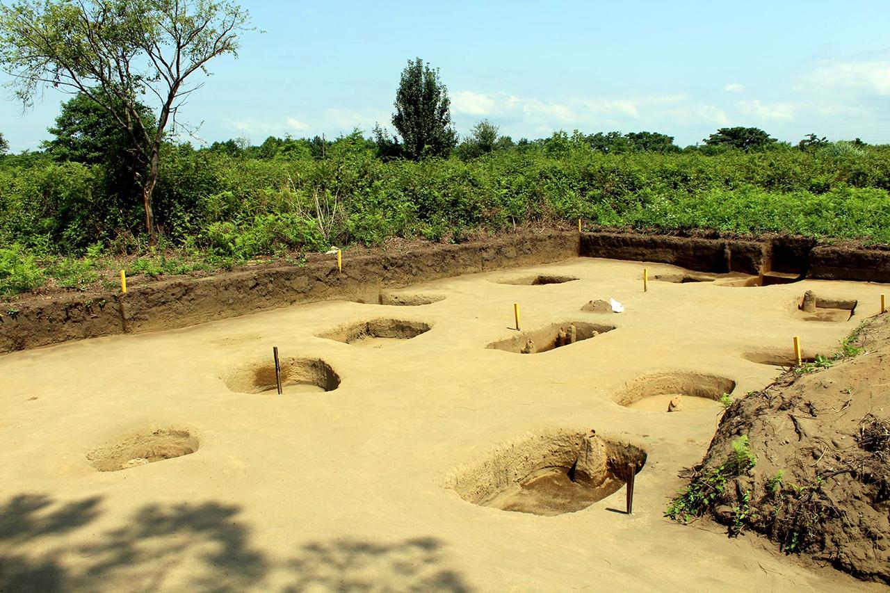 ფიჭვნარის არქეოლოგიური ექსპედიცია 2017