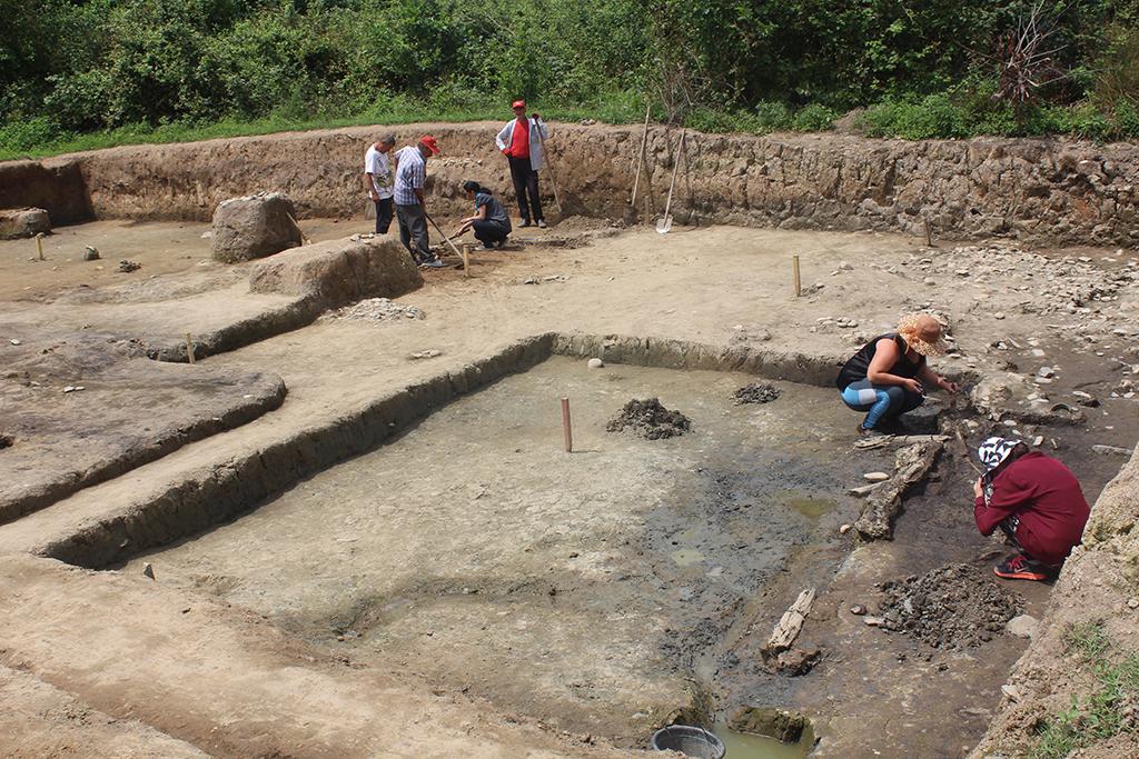 ფიჭვნარის ნაქალაქარის ტერიტორიაზე არქეოლოგიური გათხრები მიმდინარეობს