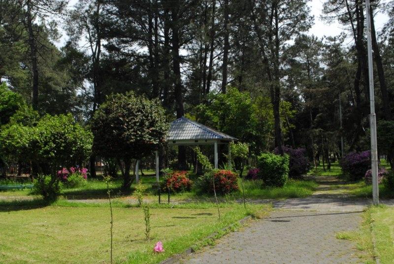 ქობულეთის ზღვისპირა ბაღი